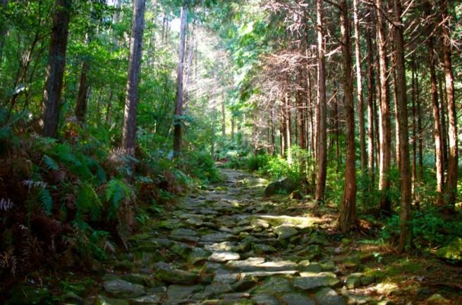 日本の美しい景色に出会う日々