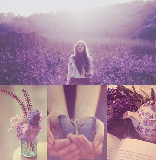 purple_wonderland_action_by_bokehlie-d5rlz14