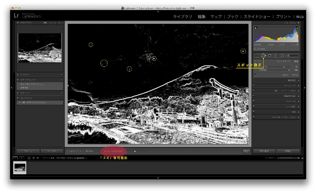 「Lightroom」の「スポット修正」ツールを解説した画面