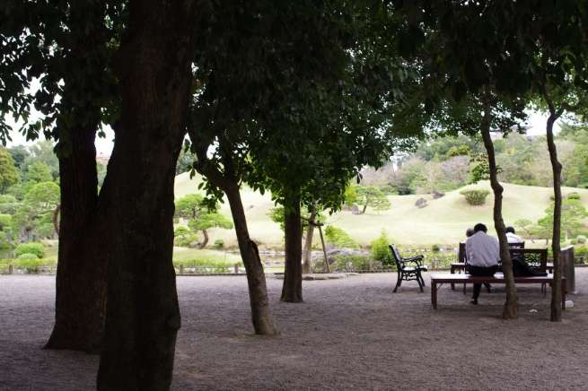 トンネル構図の例:木立の中ベンチに座っている男性の後ろ姿の写真