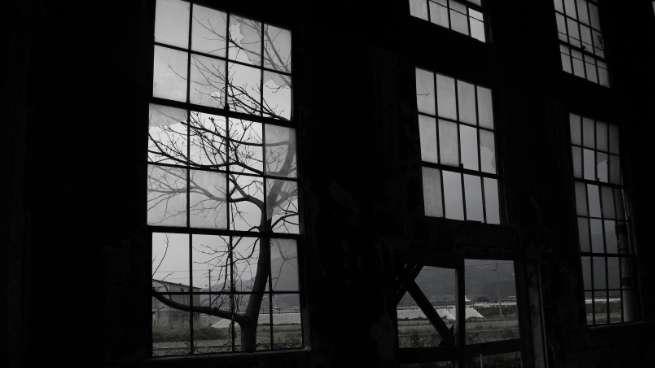 額縁構図の例:窓とその奥に写っている木々の写真