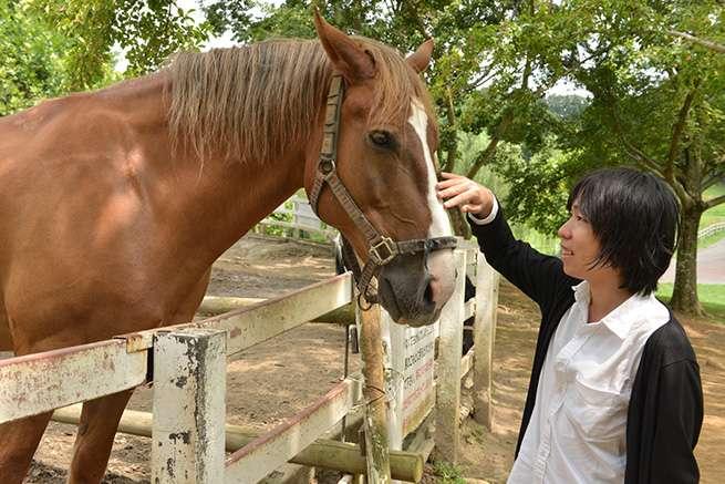 次は馬。これまた大きいな。蹴られたら確実に死ぬだろうね