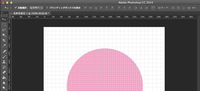 10pixelに設定しグリッド線が表示されている状態の画像