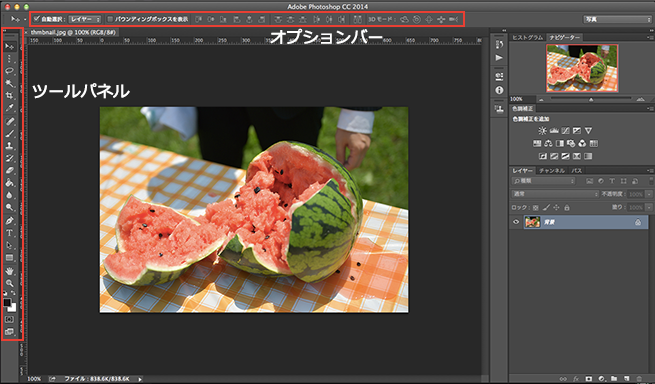 Photoshopの画面の説明(ツールパネルとオプションバー)