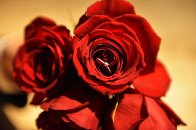 日の丸構図の例「薔薇と指輪」