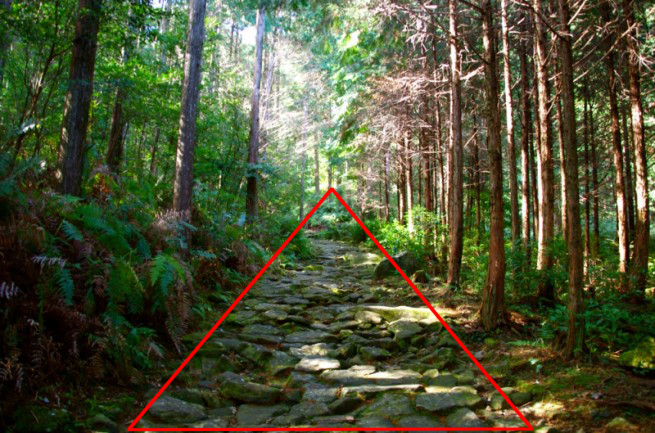 三角構図の例「森の小径」にガイドラインを入れた画像