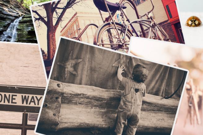 もはや観賞していたい 海外のハイクオリティなフリー写真素材を入手