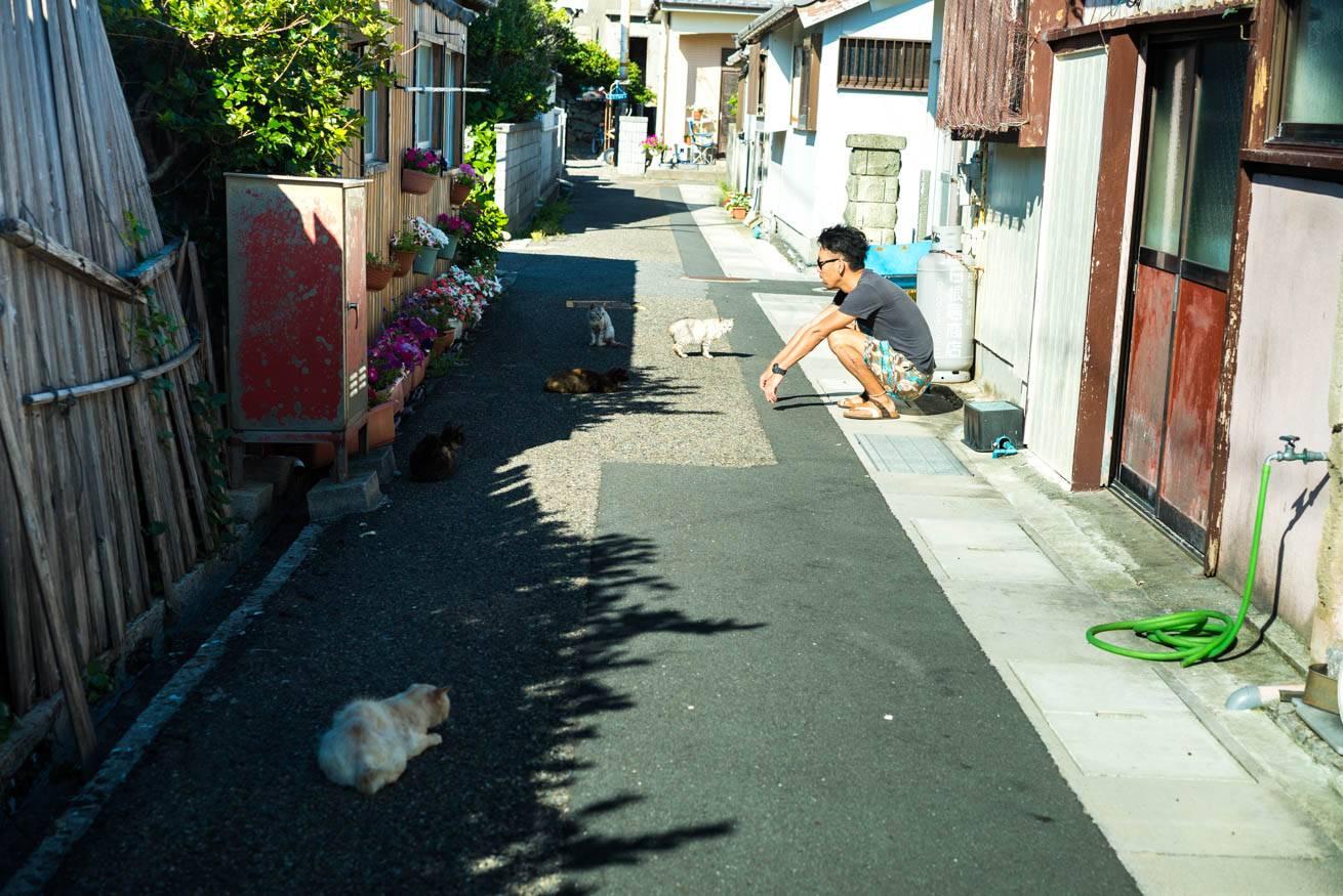 道の真ん中に座り込んでネコを見つめている株式会社LIGの社長・吉原ゴウの写真
