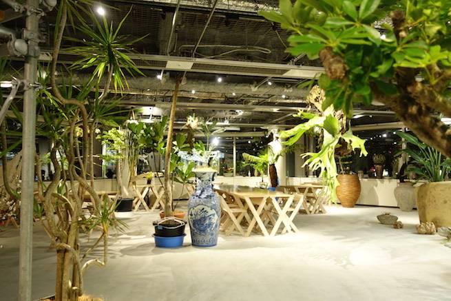 garden_night