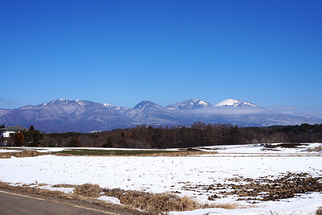 wazawaza02