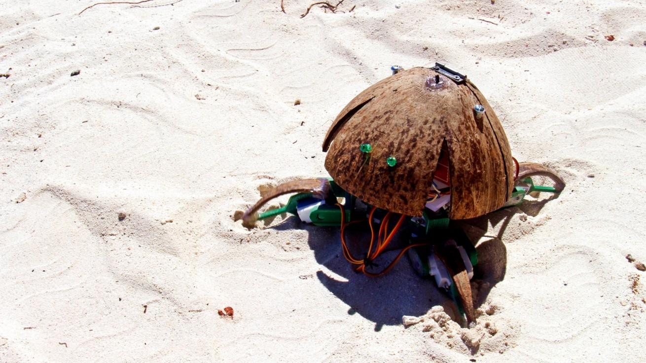 ココボット: ココナッツの殻を使ったロボット