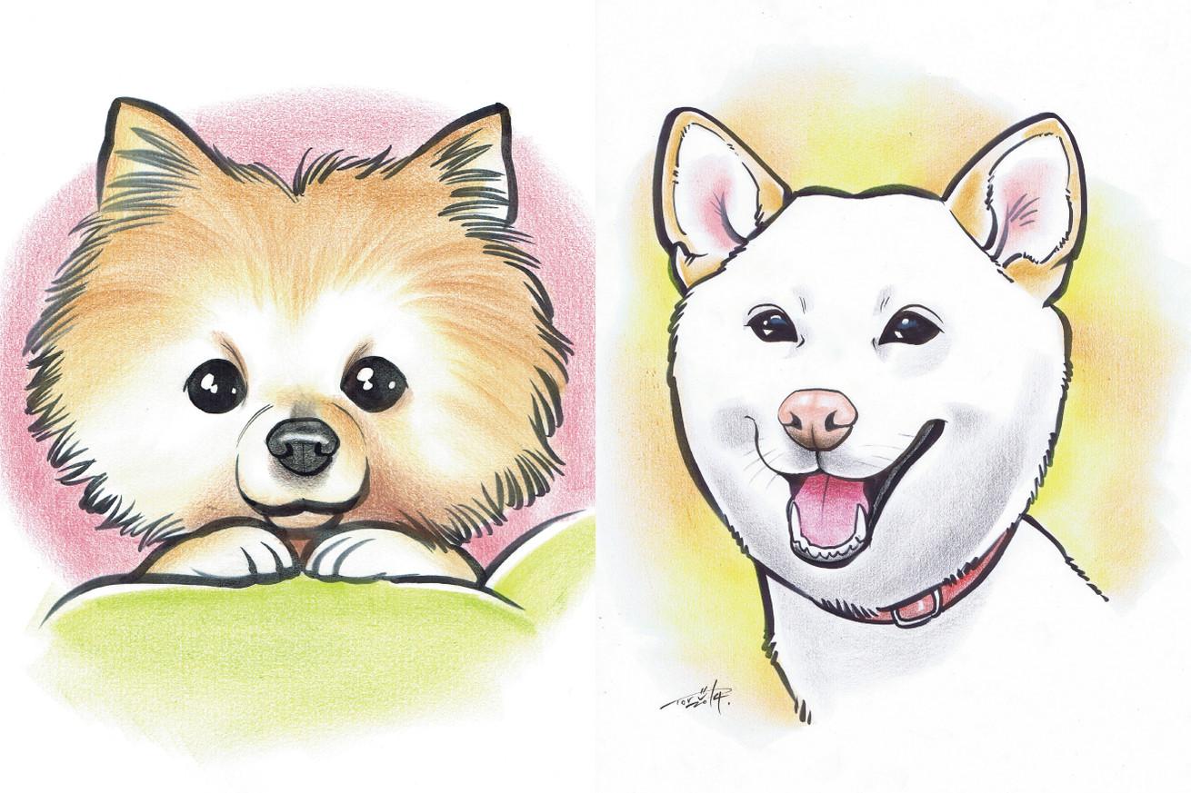 犬や猫のイラストの描き方の基本大事なのは輪郭 東京上野のweb制作
