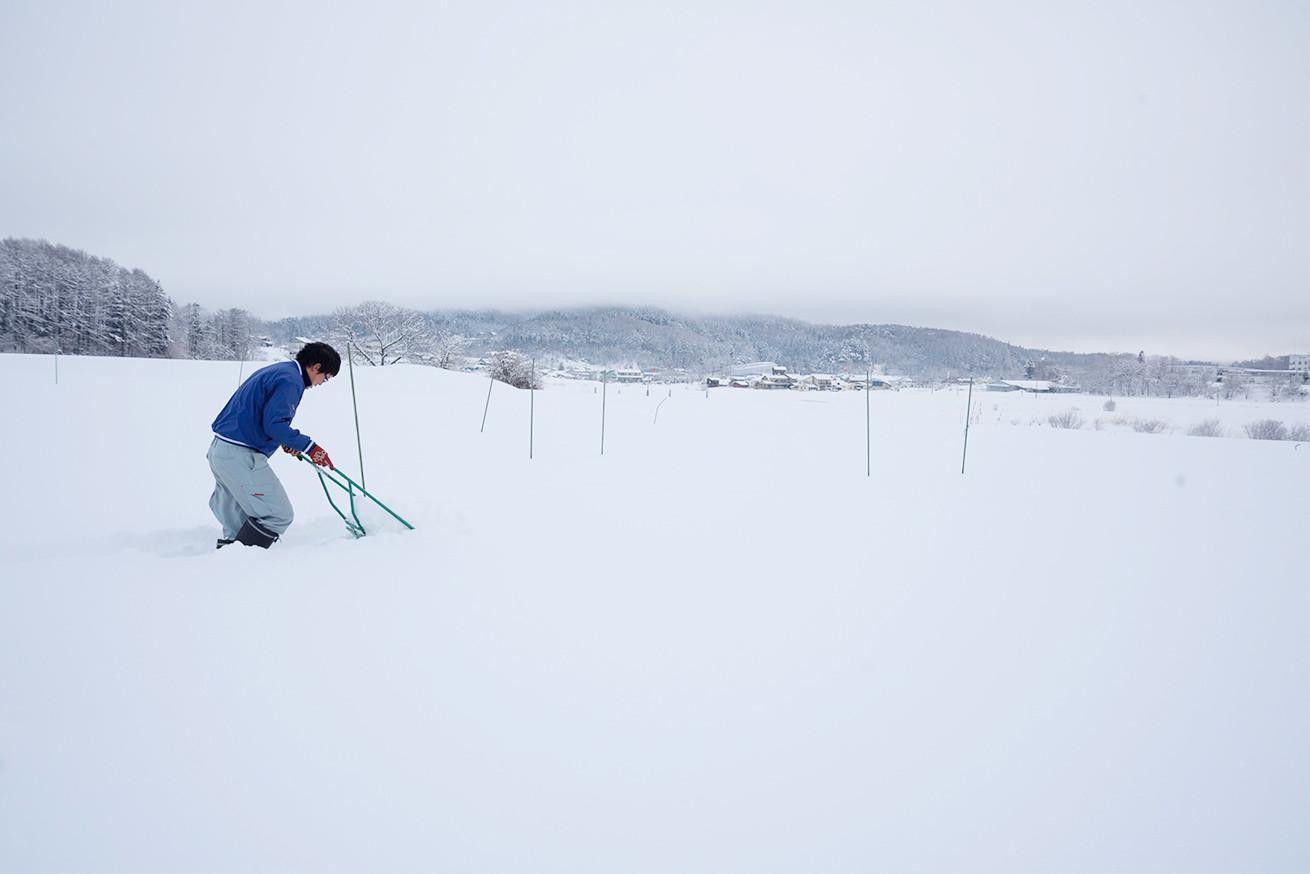 雪をかきわけて進むあらぴー