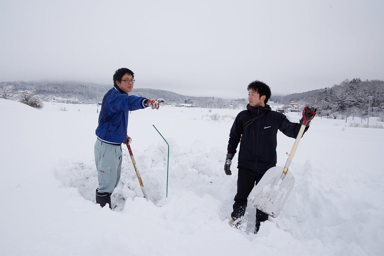 あゆさんとあらぴー雪を掘る3