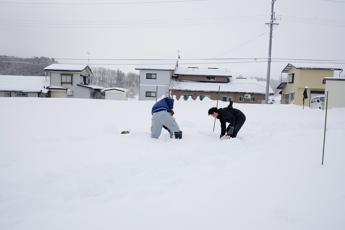 あゆさんとあらぴー雪を掘る4