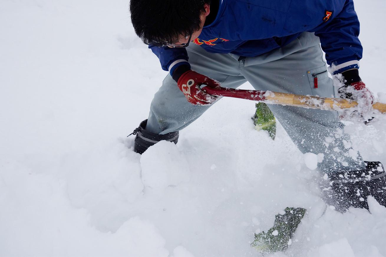 あらぴー雪を掘りまくる