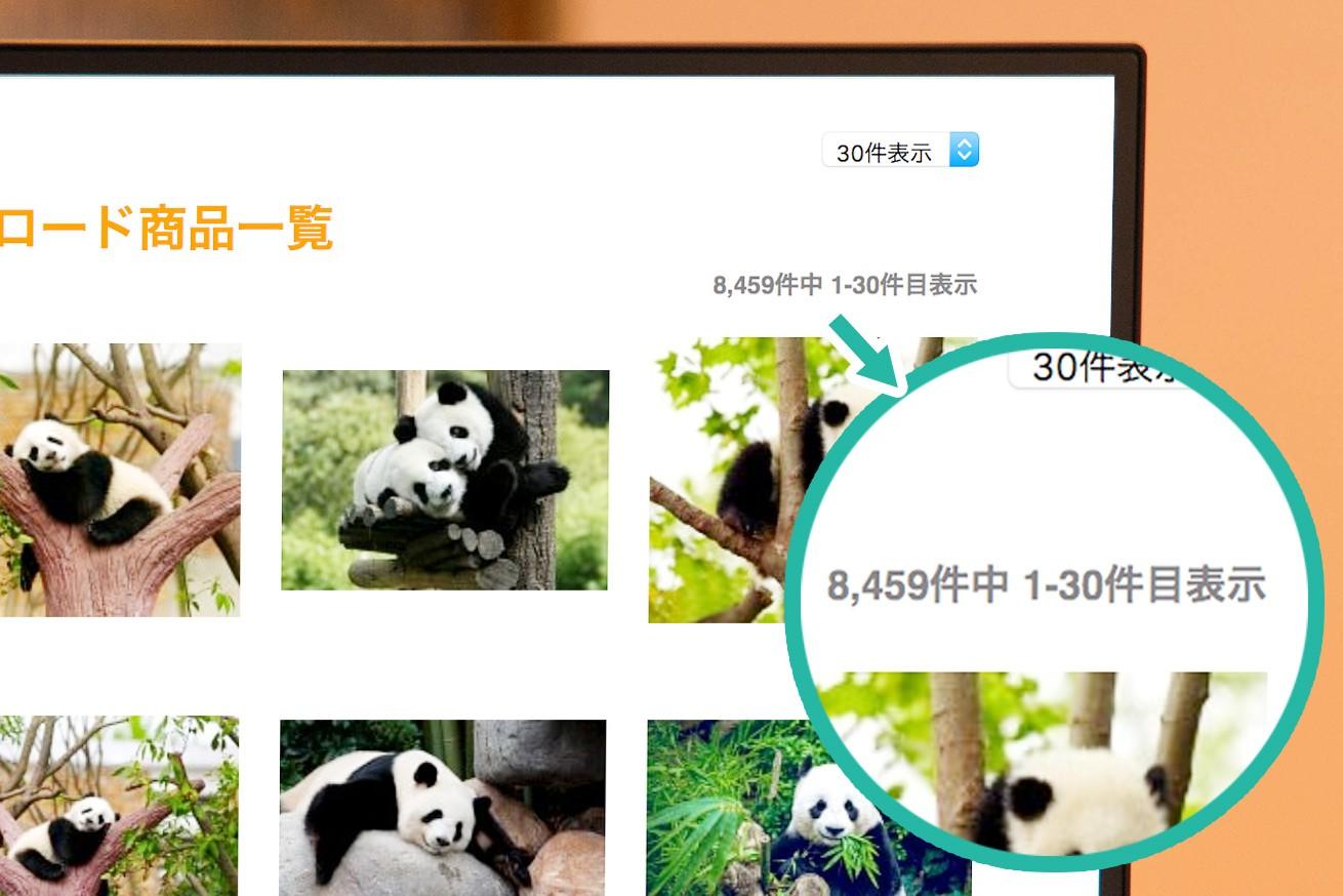 パンダ検索件数