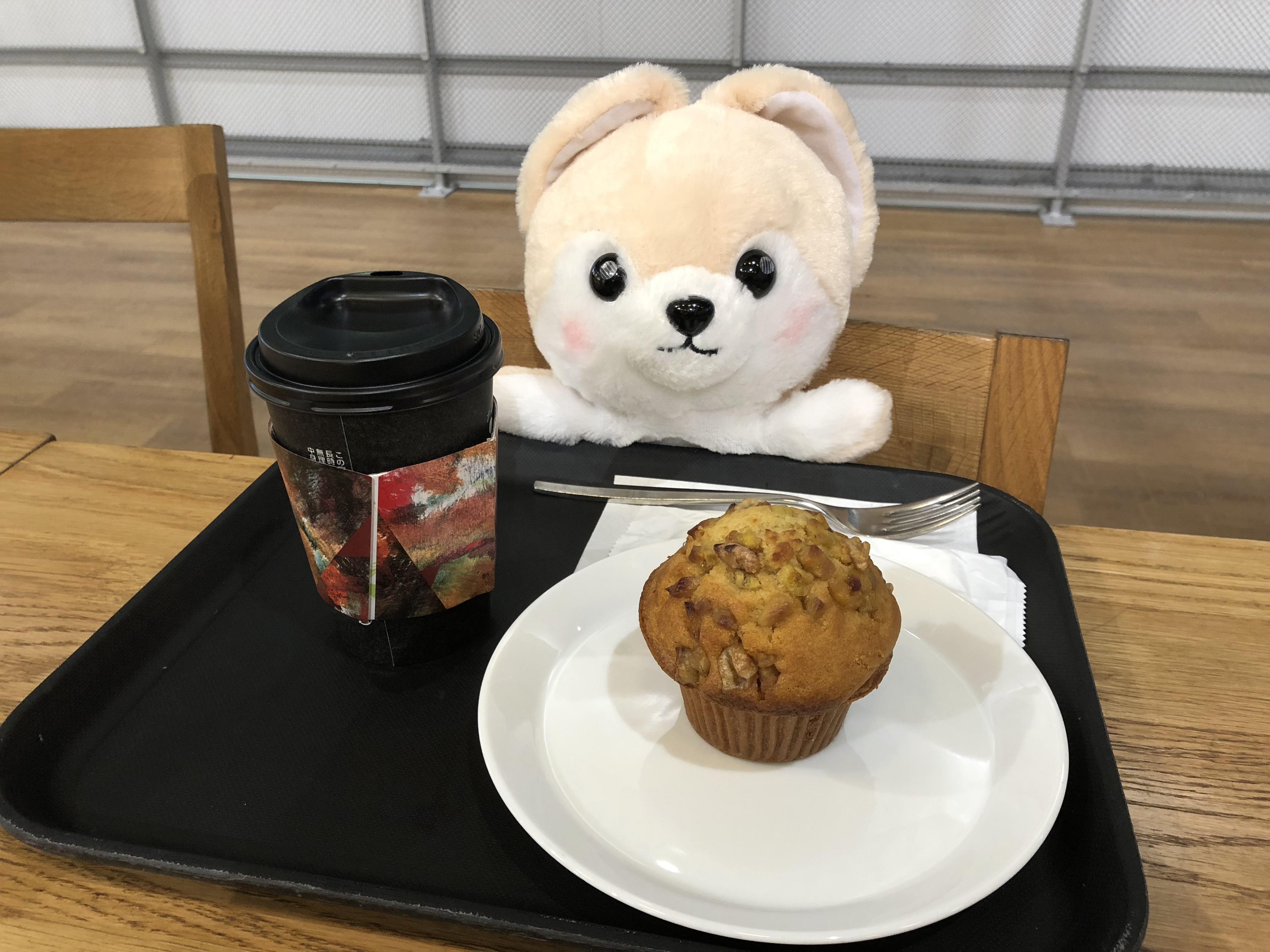 カフェでお茶をしているゴウ子ちゃんの写真