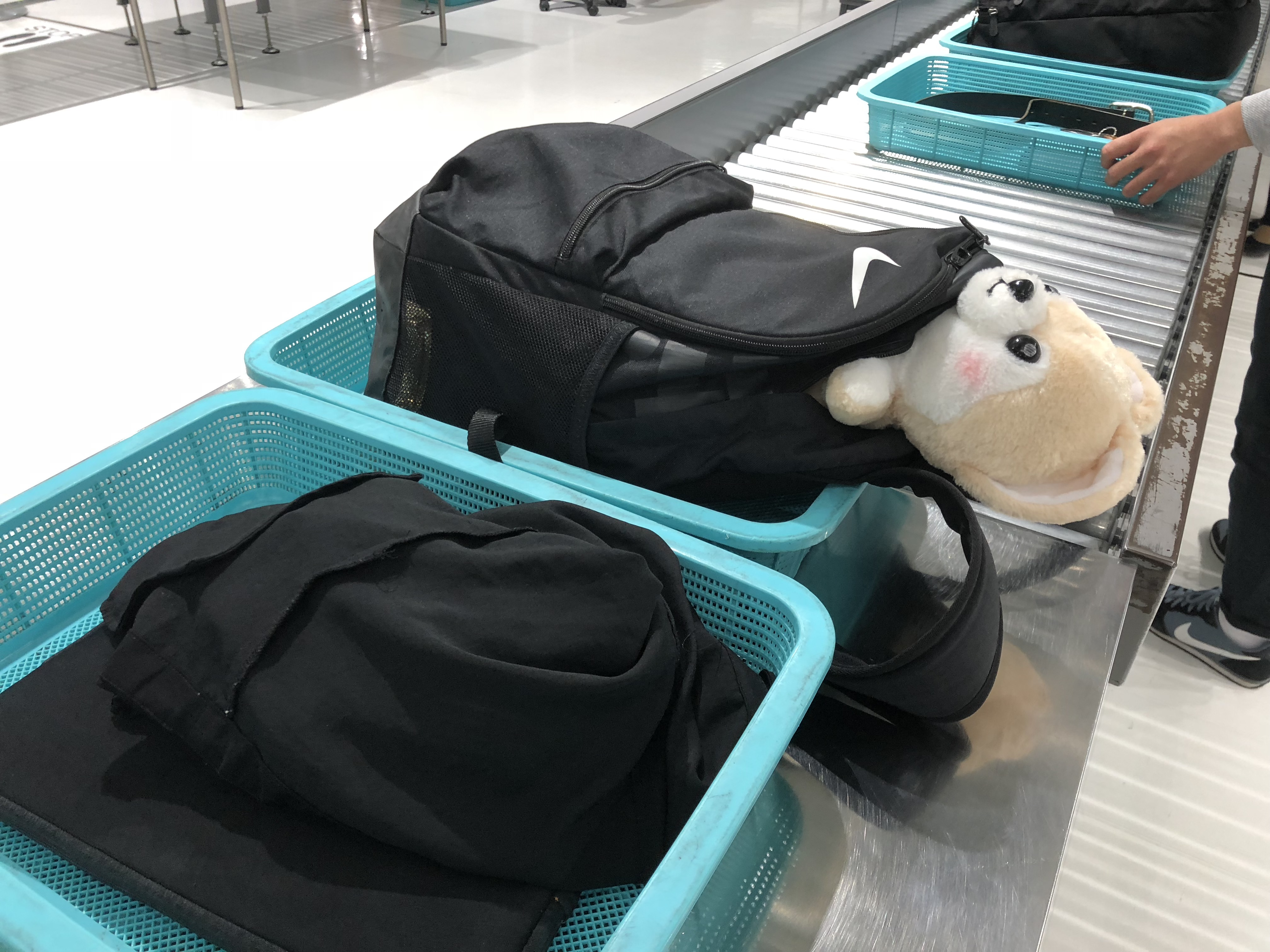アシスタントのゴウ子ちゃんが搭乗する前に手荷物検査を受ける写真