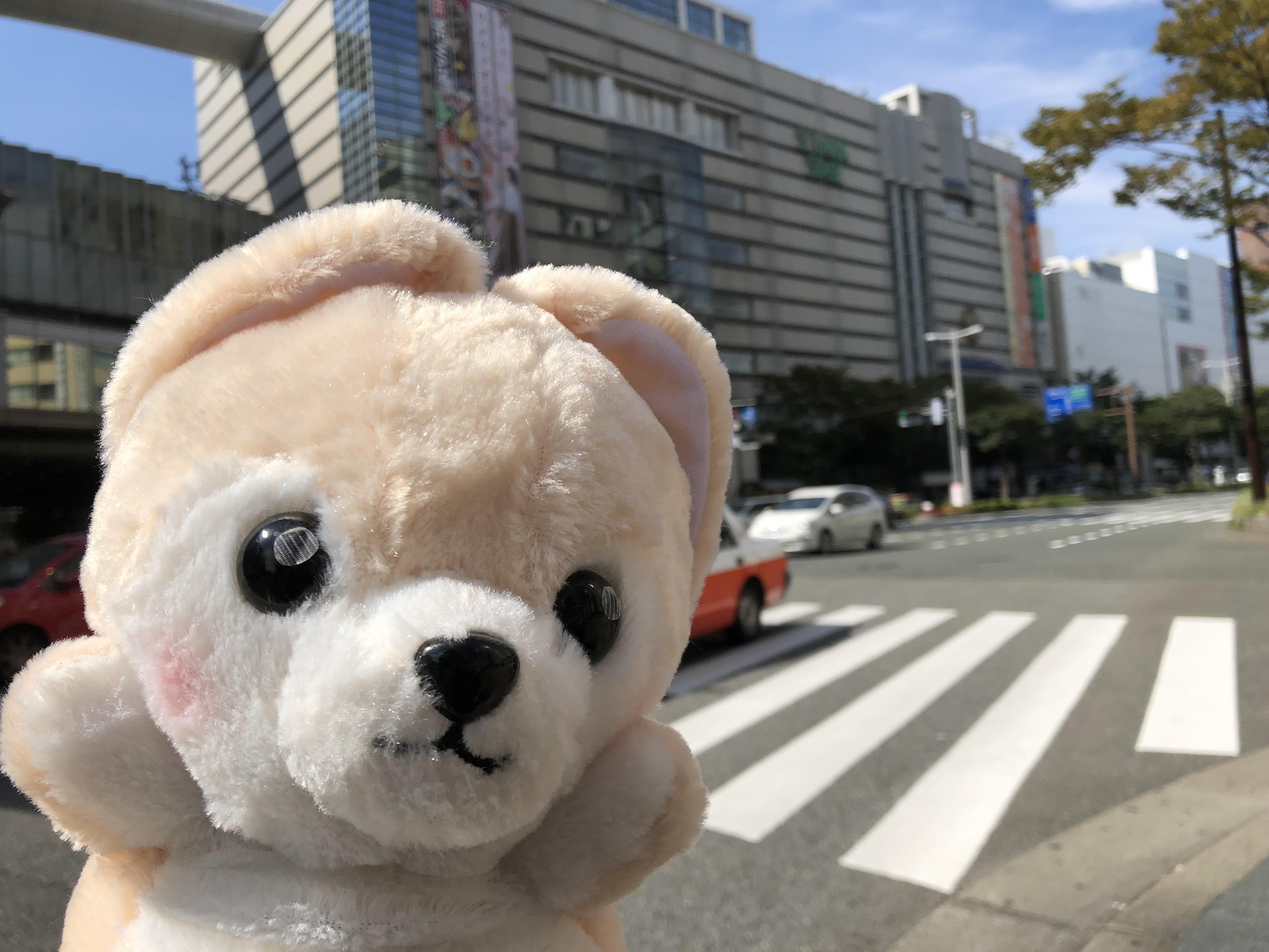 福岡県の天神で楽しんでいるゴウ子ちゃんの写真