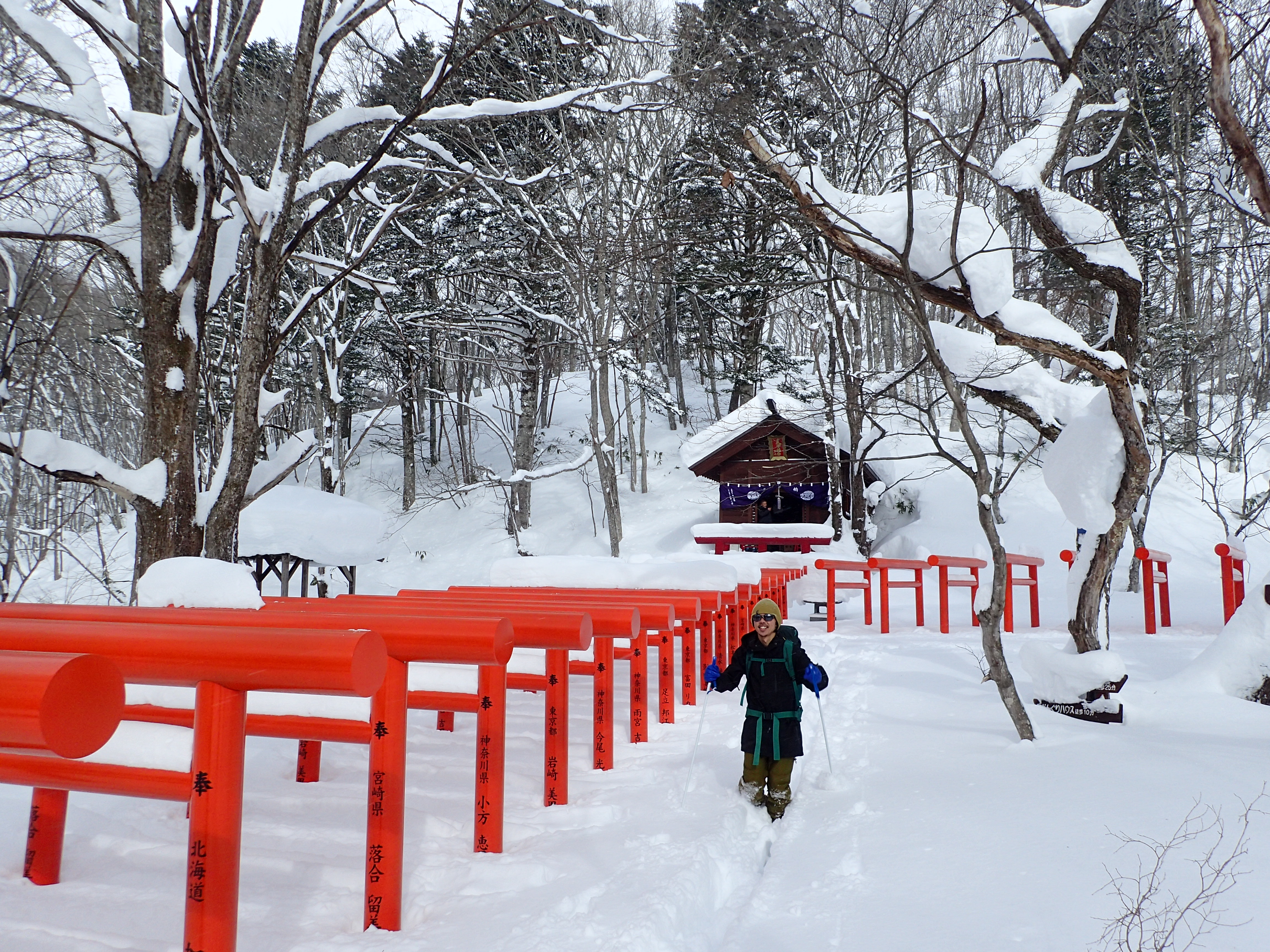 雪と連続して並ぶ鳥居