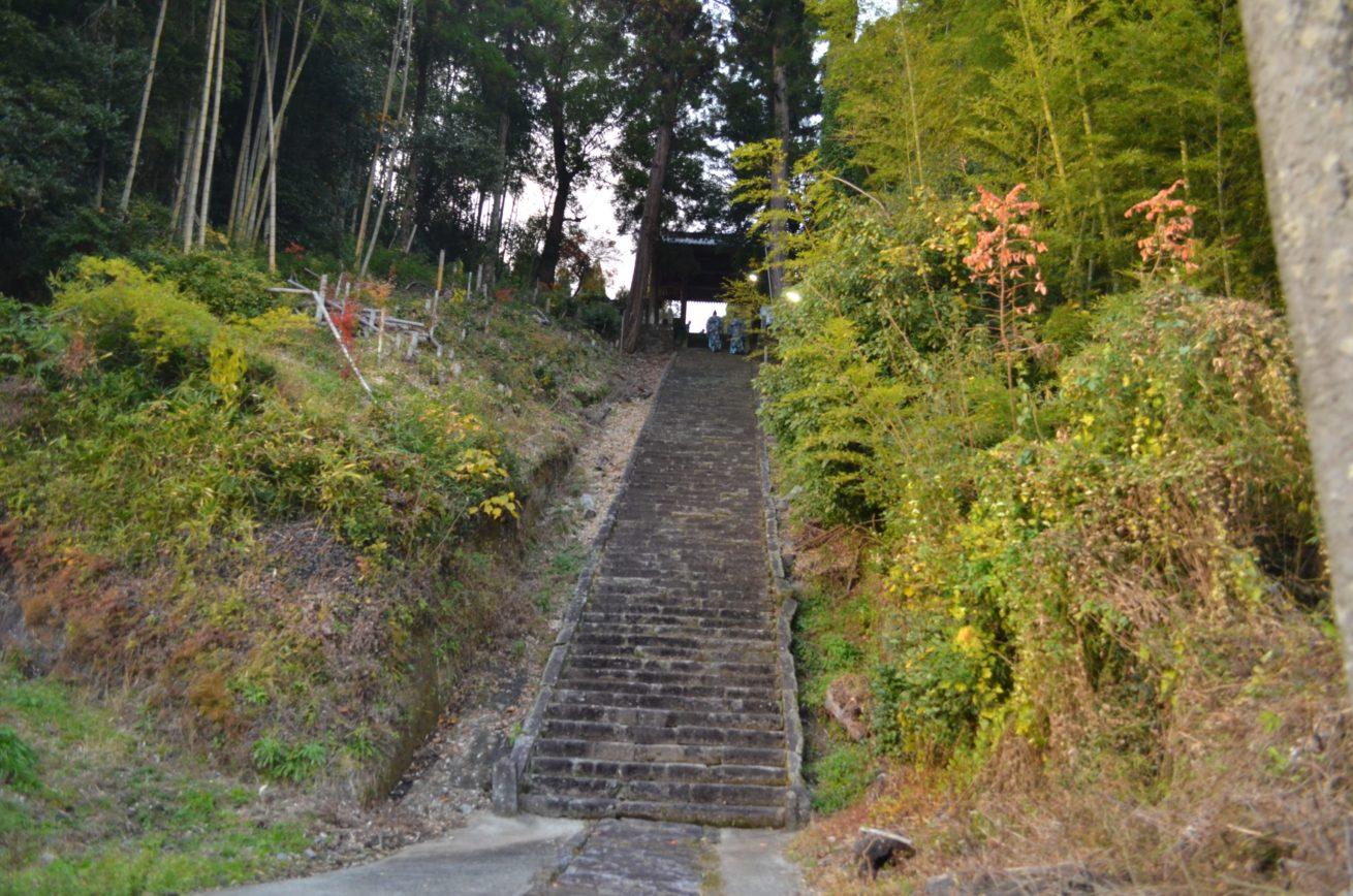 傾斜のある階段の写真