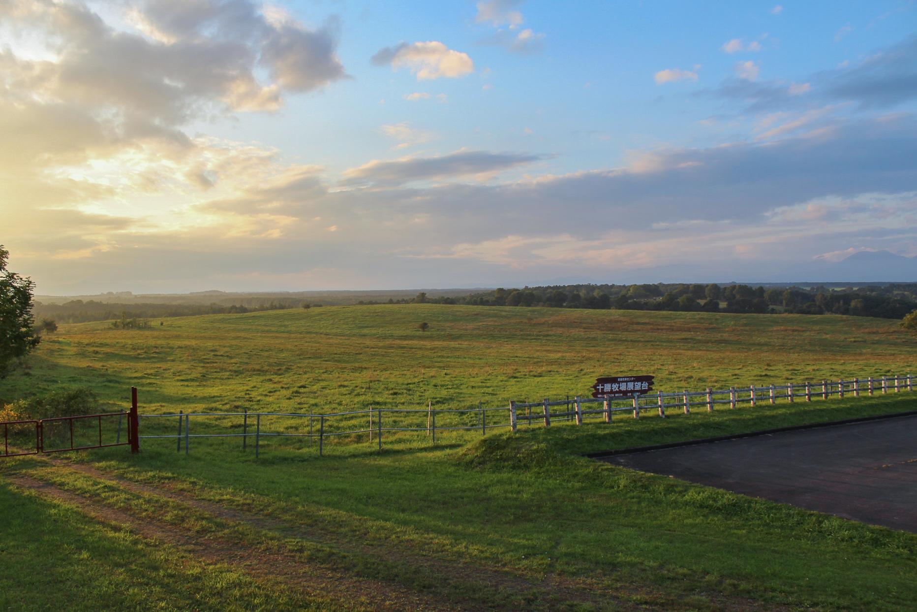 十勝牧場展望台から眺める風景