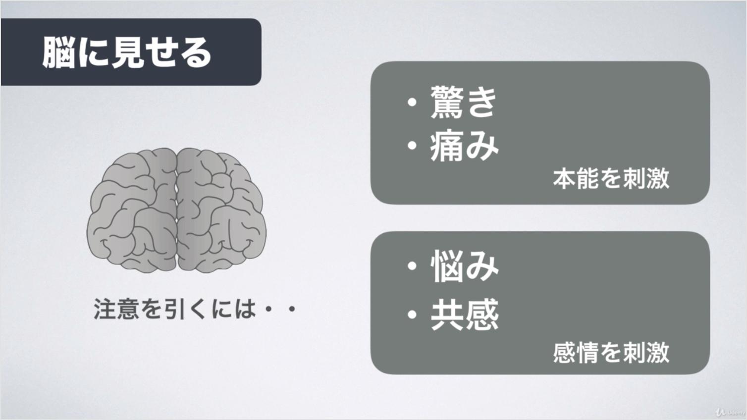 脳に見せるキャプチャ