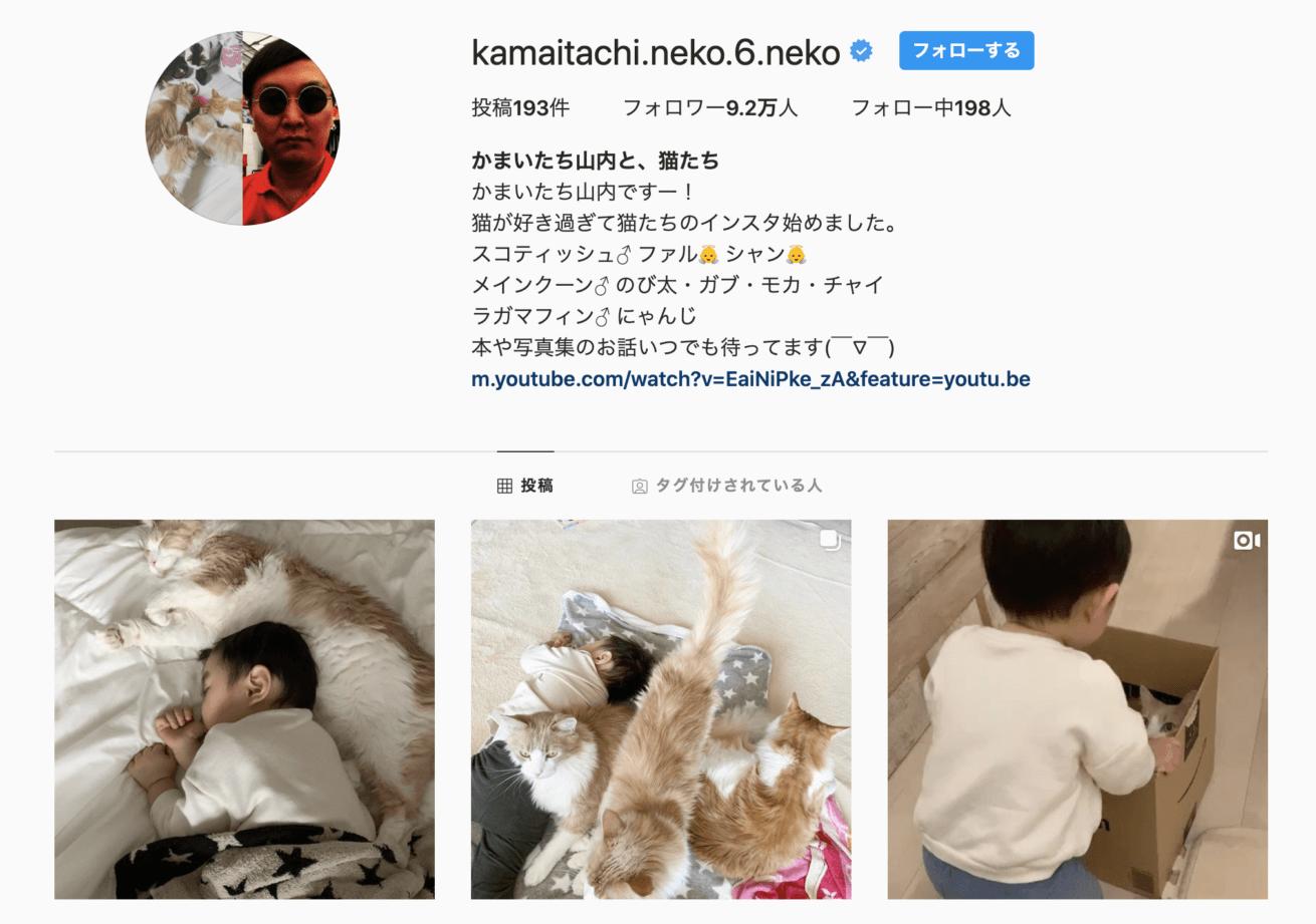 かまいたちの山内さんの愛猫のインスタ