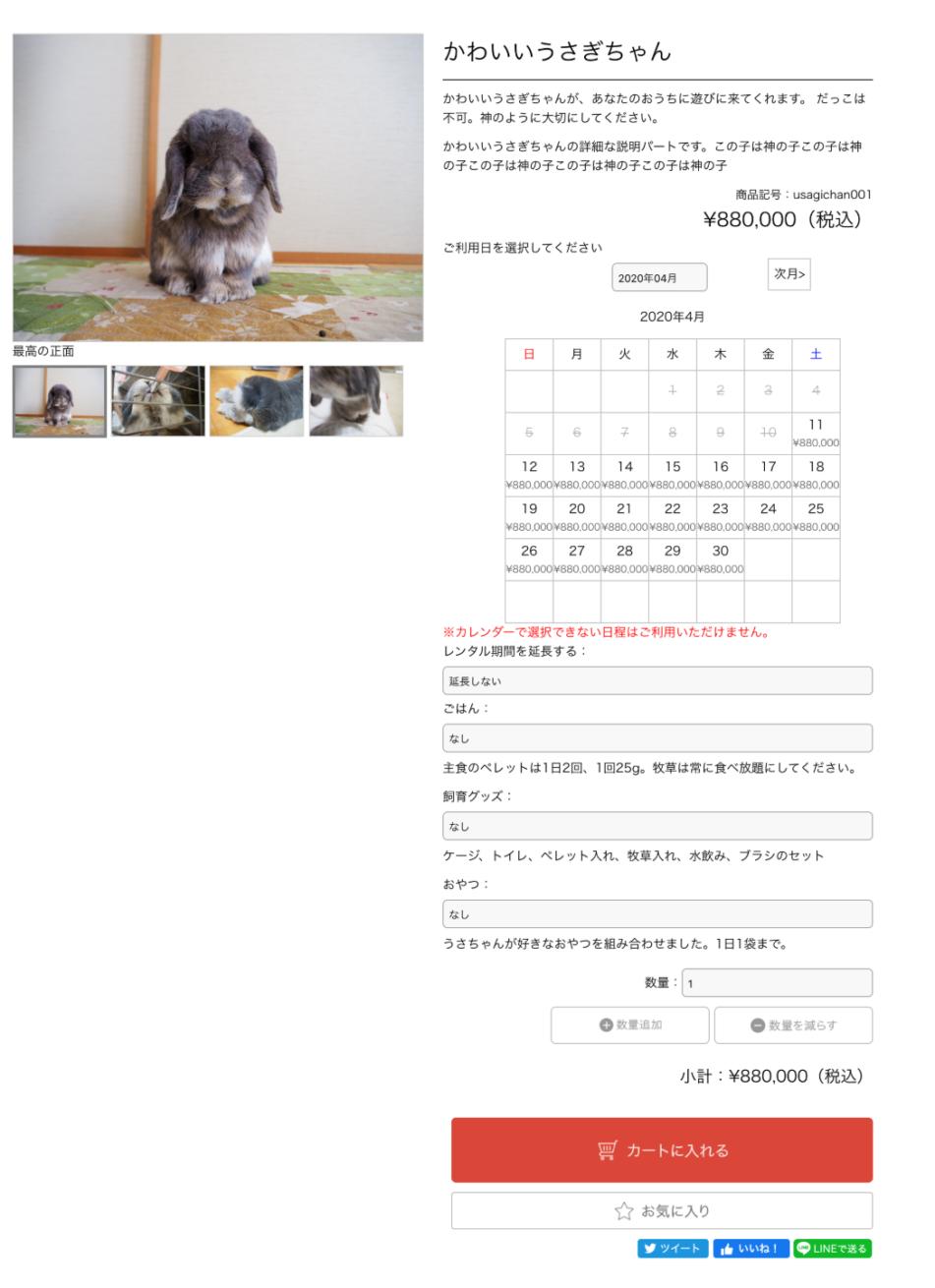 完成したレンタル商品のページ
